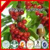 Factory Supply Cherry Extract Powder/Malpighia glabra L.P.E./Vitamin C17% 22% 25%