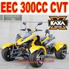 Quad 300cc EEC