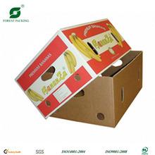 BANANA PACKING/FRUIT BOX FP72780