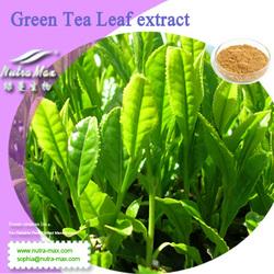 NutraMax Inc.-100% Natural bio green tea extract powder