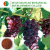 Grape Seed P.e. with Proanthocyanidins for antioxidant