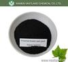 Humic Acid Potassium Agrochemical Fertilizer,Potassium Humate