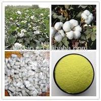 Cotton seed P.E.