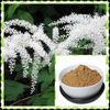 Black Cohosh P.E Triterpenoid saponin 2.5%-98%