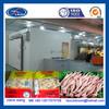 poultry freezer equipment