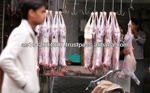 Fresh & Frozen Halal Meat (Goat/Sheep & Lamb).