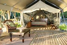 The Serengeti Surfari Tent