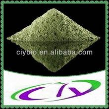 Spinacia oleracea Spinach