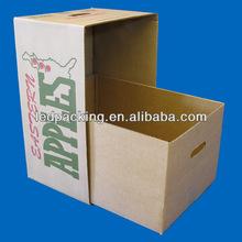 2014 well design apple carton box