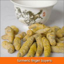 for turmeric finger buyers