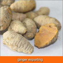 high curcumin air dried ginger export