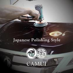 CAMUI hydrophobic nano coating car wax building coating