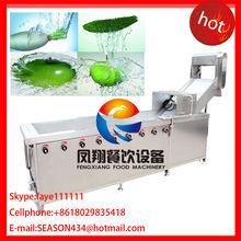 WA-1000 air bubble fruit and basil washing machine blanched garlic leaves washing machine