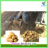 Soil Covering,Pressing High-performance Potato Planting Machine/Potato Planter Machine For Sale
