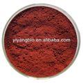Supply corynanthe yohimbe