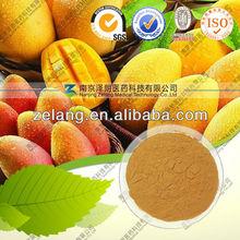 African Mango Seed Extract 10:1 20:1