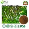 Actaea Racemosa Extract, Triterpenoid Saponins 8%