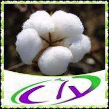 98% Gossypol formic acid,Cotton seed P.E.