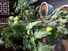 top soil vegetable,topsoil,clay soil for plants