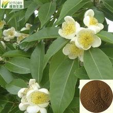 100% natural polygonatum odoratum extract powder extract