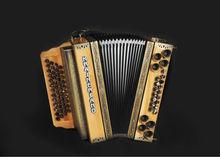 Professional Accordion / Stairische harmonika/ harmonica