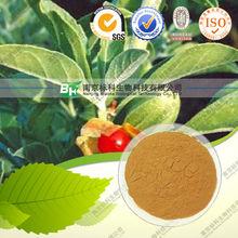 High quality Natural Ashwagandha Extract 10:1,20:1, 3% Alkaloids