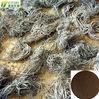 valerian extract valerianic acid 0.8% powder