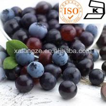 malt extract with best price (liquid extract) on food