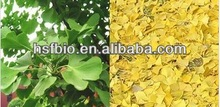 Ginkgo Biloba Extract 24%/6%/<1ppm(Top quality), Specializing in Botanical Extracts