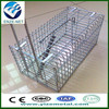 cheap stainless steel rat cages (professional manufacturer)