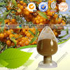 Natural Seabuckthorn Fruit Extract 10:1 20:1 or other ratio
