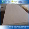 Red oak face/back falcata lumber core blockboard