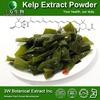 100% Natural Fucoidan Kelp Seaweed Extract/Fucoidan 85% Food&Medical Grade