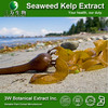 Liquid Seaweed Extract Alginate Sodium/Brown Algae P.E. Food/Feed Supplement