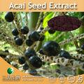 3w suministrar semillas de acai p. E. 4:1 10:1