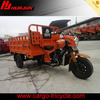 250cc chinese motorcycle engine/adult tricycles/china tricycle