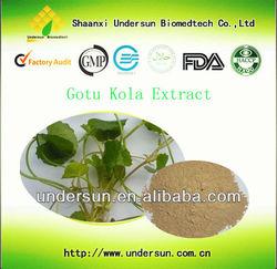 Best Gotu Kola Extract triterpenoidal saponin