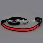 2014 pet product distributor led flashing dog leash