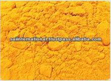 Turmeric Powder for extract curcuma