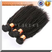 Unprocessed 5A tara hair short hair brazilian curly weave