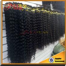 Wholesale Kinky curly Malaysian braiding human hair