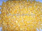 high quality frozen yellow corn price