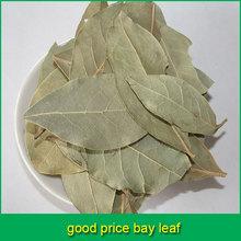 good price bay leaf