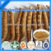cordyceps sinensis mycelium extract/Cordyceps sinensis extract/Fermentation Cordyceps Powder