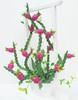 Dragon Fruit Clay Flowers