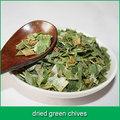 secas cebolinha verde