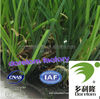 Factory supply environmental high quality OEM No6318 artificial turf