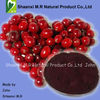 100% Pure cranberry fruit powder