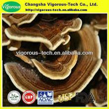 Natural coriolus mushroom polysaccharides yunzhi extract powder10-40%