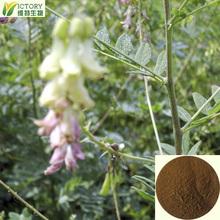 polygonatum odoratum druce extract